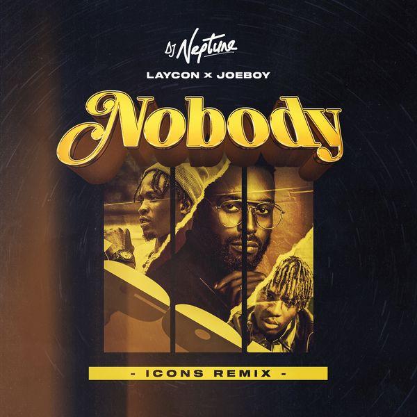DJ-Neptune-Nobody-Icons-Remix
