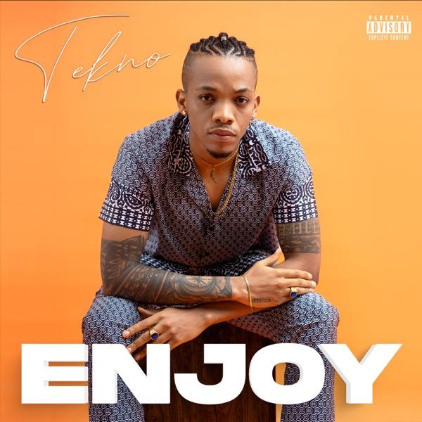 Enjoy-artwork
