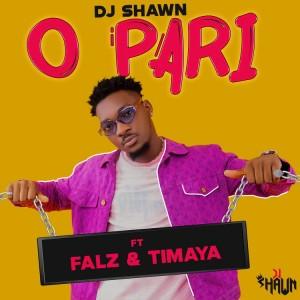DJ-Shawn-feat.-Falz-Timaya-
